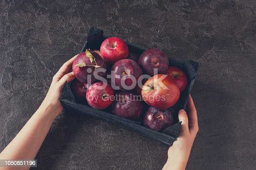 1020586746istockphoto Woman holding the wooden box with fresh ripe apples 1050851196