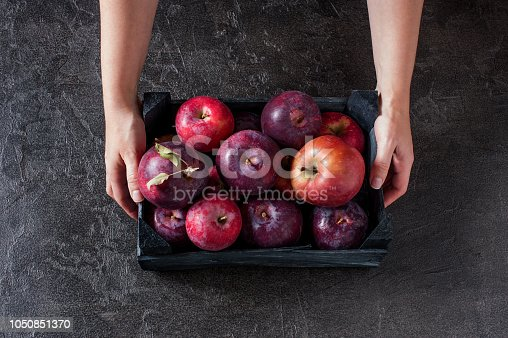 1020586746istockphoto Woman holding the wooden box with fresh ripe apples 1050851370