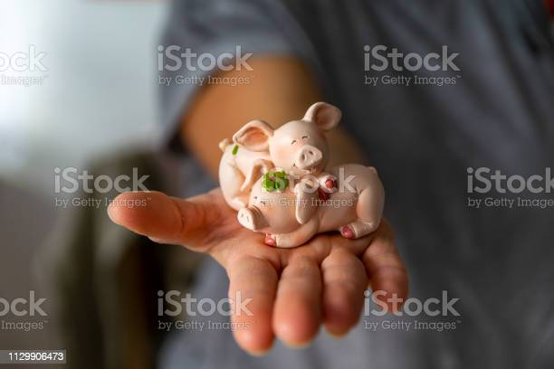 Woman holds a lucky charm in her hand a lucky pig picture id1129906473?b=1&k=6&m=1129906473&s=612x612&h=uixvwzbqivkuouf 7725s7tbq0q7hov0gzah6wmewdi=