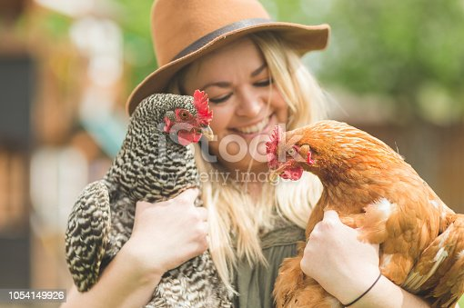A Caucasian mom sporting a stylish fedora affectionately holds two chickens in her urban backyard farm.