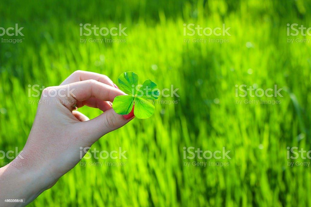 Frau holidng four leaf clover Lizenzfreies stock-foto