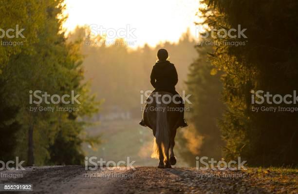Woman horseback riding in autumn picture id855291932?b=1&k=6&m=855291932&s=612x612&h=wqph qkwqtvo3vtcync6n hlzim6gdaac 9ycw yaoa=