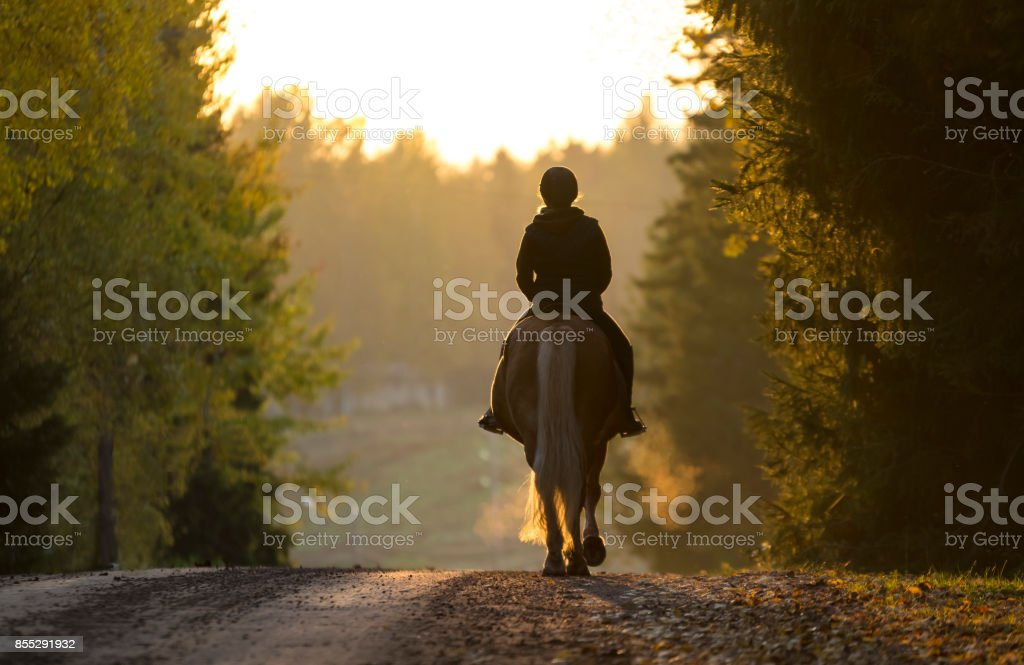 Woman horseback riding in autumn stock photo