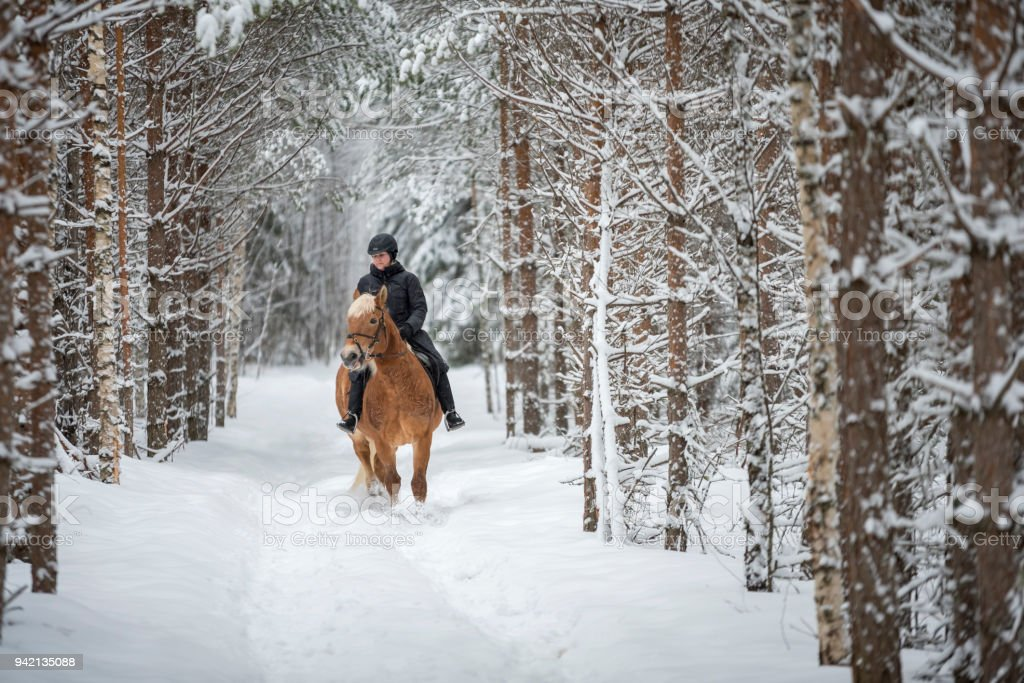 Woman horseback riding in forest in winter stock photo