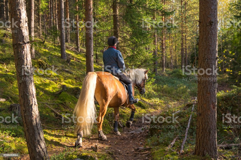 Woman horseback riding in forest path stock photo