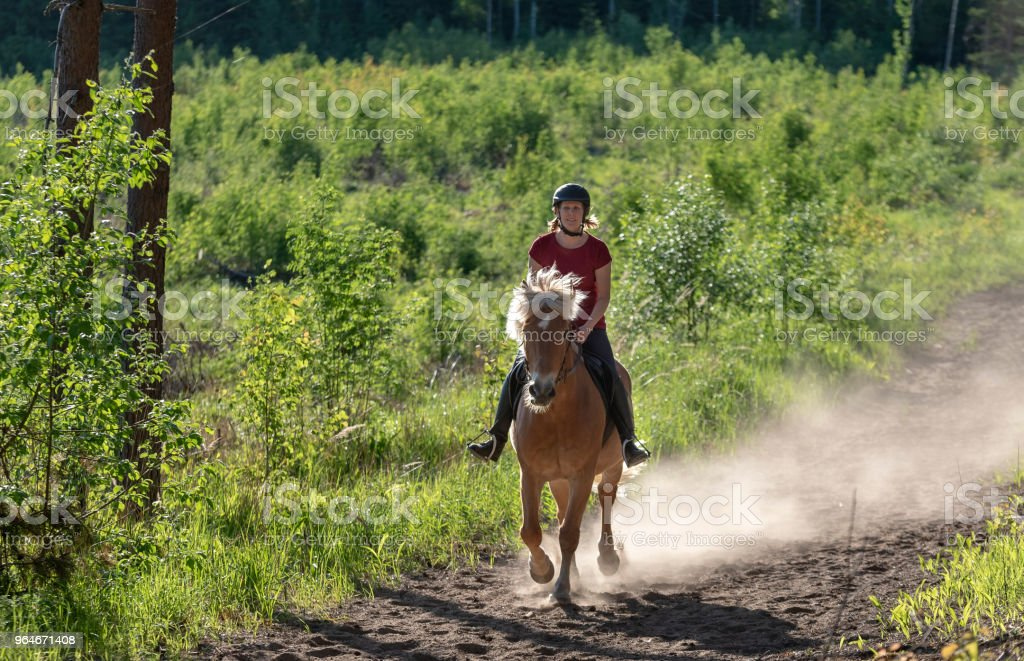 Woman horseback riding in forest royalty-free stock photo