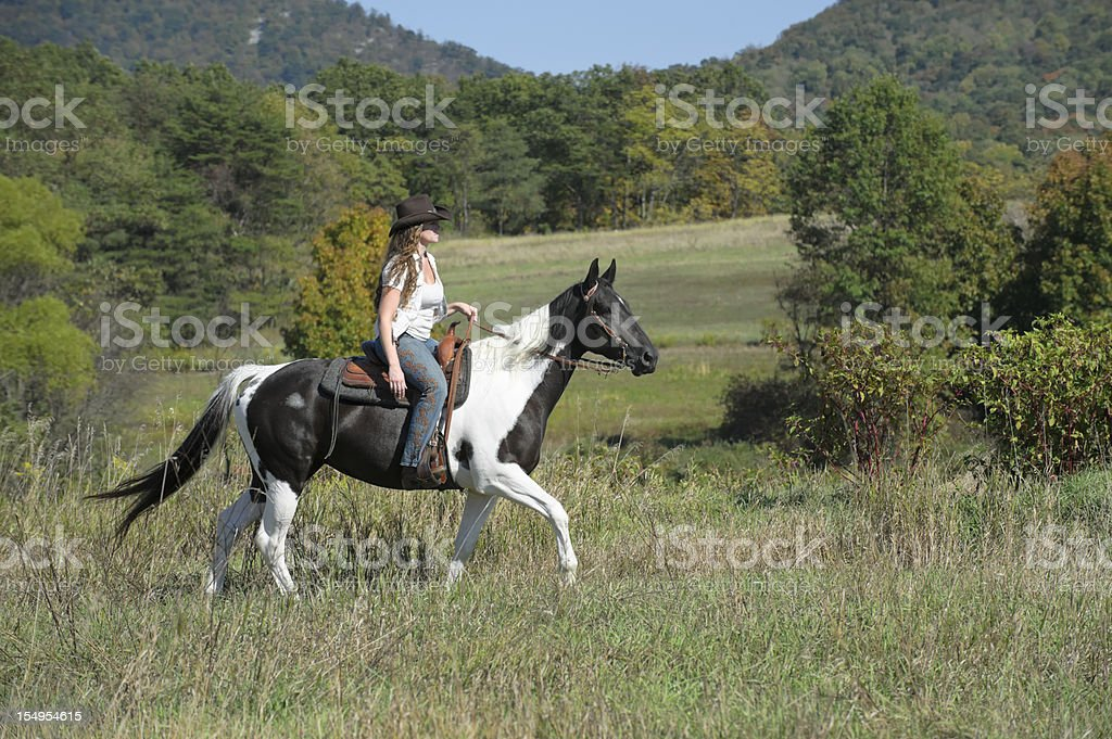 Woman Horseback Riding In Sunny Mid Summer Field Stock Photo Download Image Now Istock
