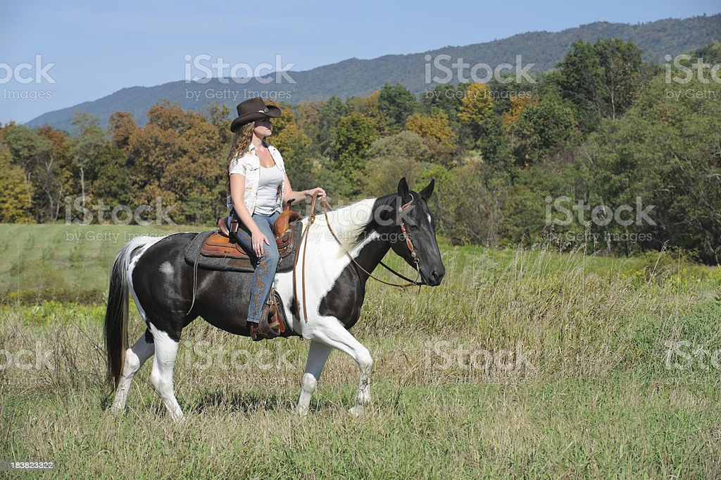 Woman Horseback Riding In Sunny Summer Field Stock Photo Download Image Now Istock