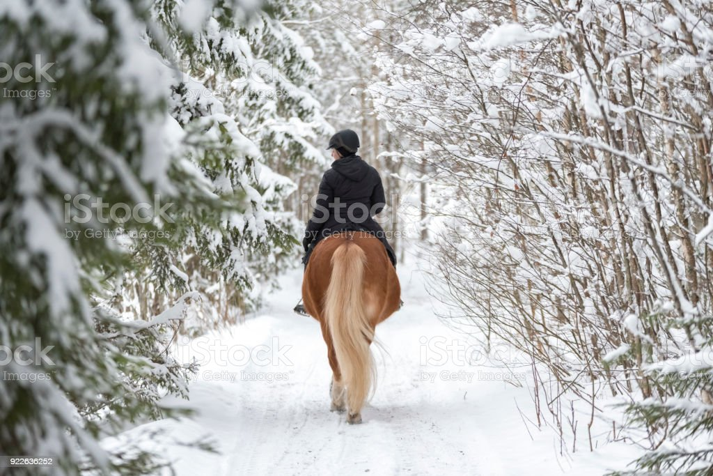 Woman horseback riding in winter forest stock photo