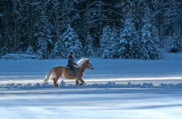Woman horseback riding in winter stock photo