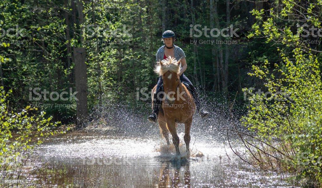 Woman horseback riding on water stock photo