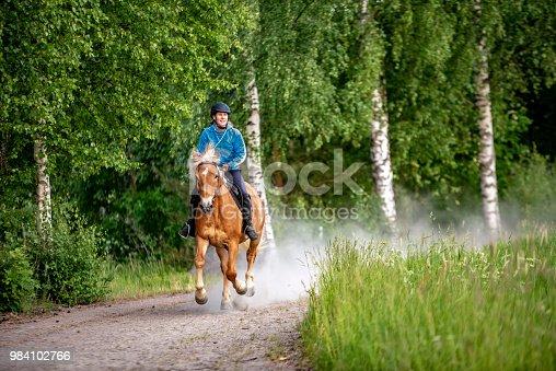 1128475475 istock photo Woman horseback riding 984102766