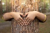 istock Woman hug the tree 1188406546