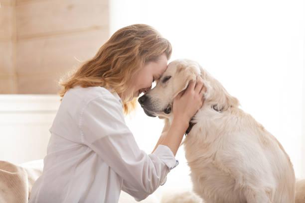 mujer abrazando a su amado perro blanco grande. concepto de comunicación animal - dog fotografías e imágenes de stock