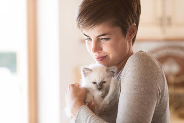 Woman hugging her kitten picture id901153392?b=1&k=6&m=901153392&s=612x612&w=0&h=bc4huxvm8sya2608gehbvdgs wnnbgatgylepuirbr4=