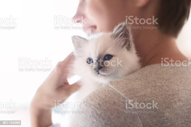 Woman hugging her kitten picture id901153568?b=1&k=6&m=901153568&s=612x612&h=c8xa6nptbay4cajpvc9kjpp5bwi8kgzhyv2jnfdwabu=