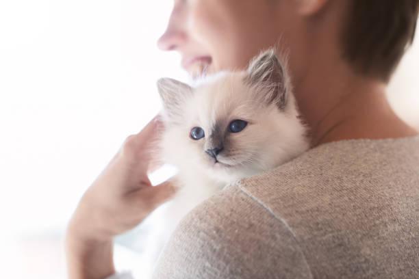 擁抱她的小貓的婦女 - 身體保養 個照片及圖片檔
