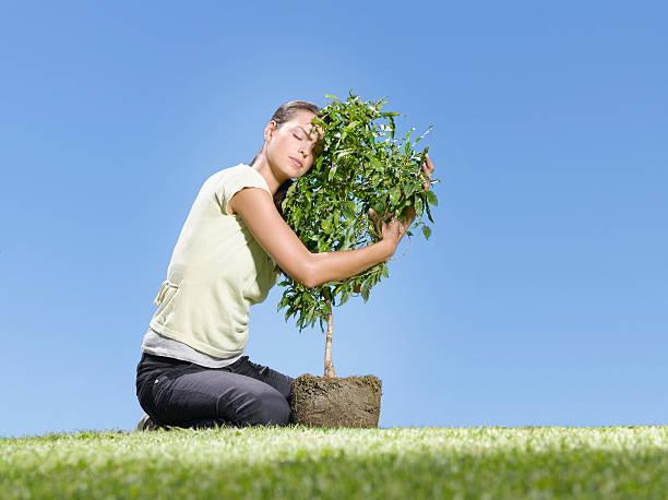 frau umarmen baum - liebesbaum stock-fotos und bilder