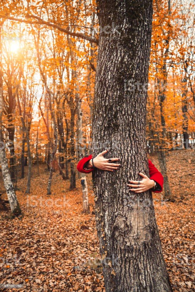 Frau umarmt Baum in einem Wald im Herbst – Foto