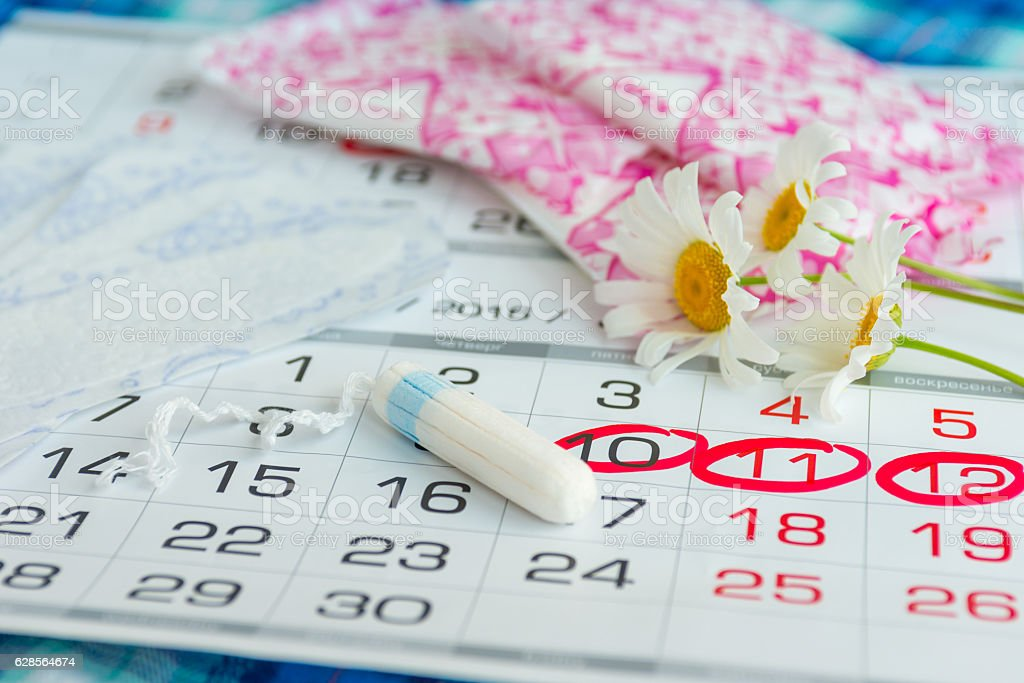 Woman hygiene protection , calendar close up.menstruation with cotton swabs stock photo