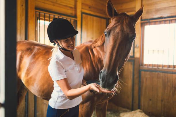 Woman in a barn with her horse picture id839055746?b=1&k=6&m=839055746&s=612x612&w=0&h=qidqiwqujfqs ffubqgjoj t4bsoqwwj 8g2wxvov5w=
