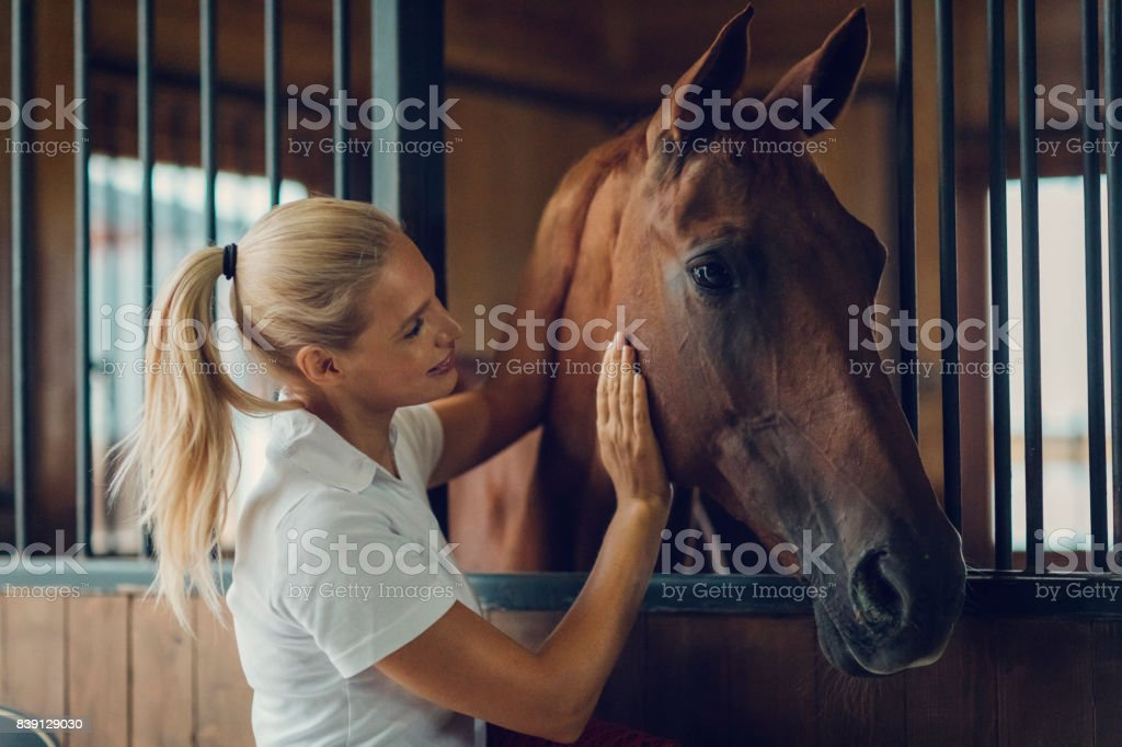Woman in a barn with her horse stock photo