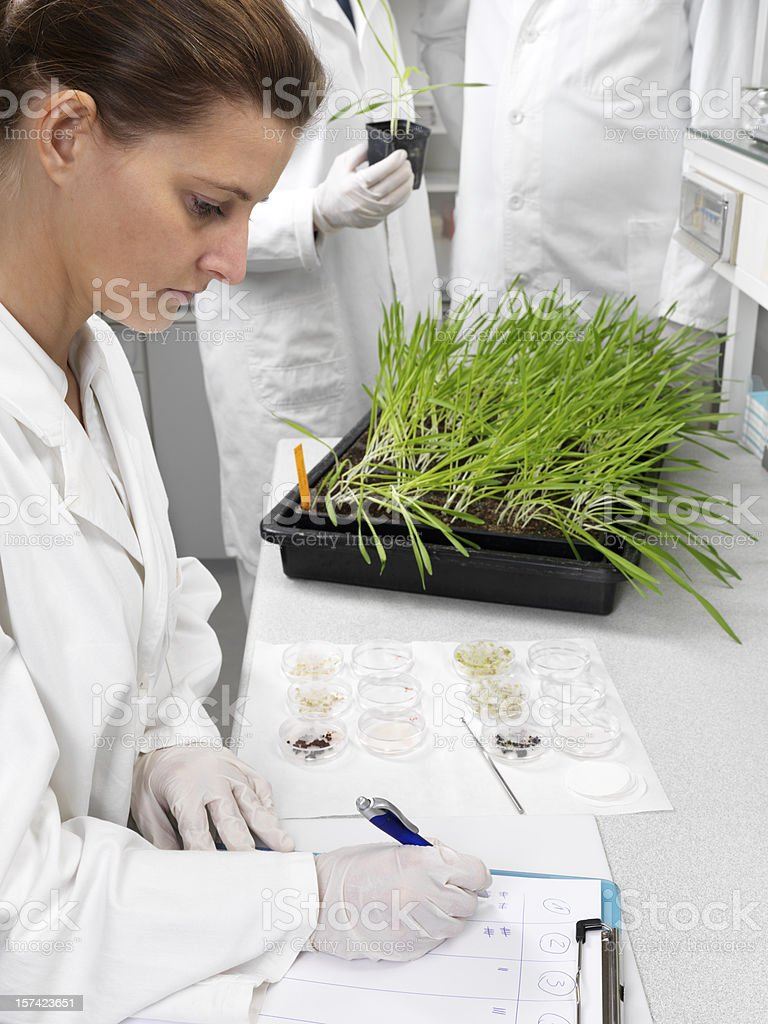 A woman in a lab coat writing on a chart in a biology lab royalty-free stock photo