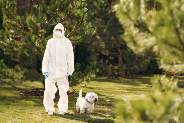Woman in a protective suit walking with a dog stock photo