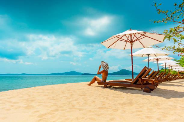 frau im strandkorb - outdoor sonnenschutz stock-fotos und bilder