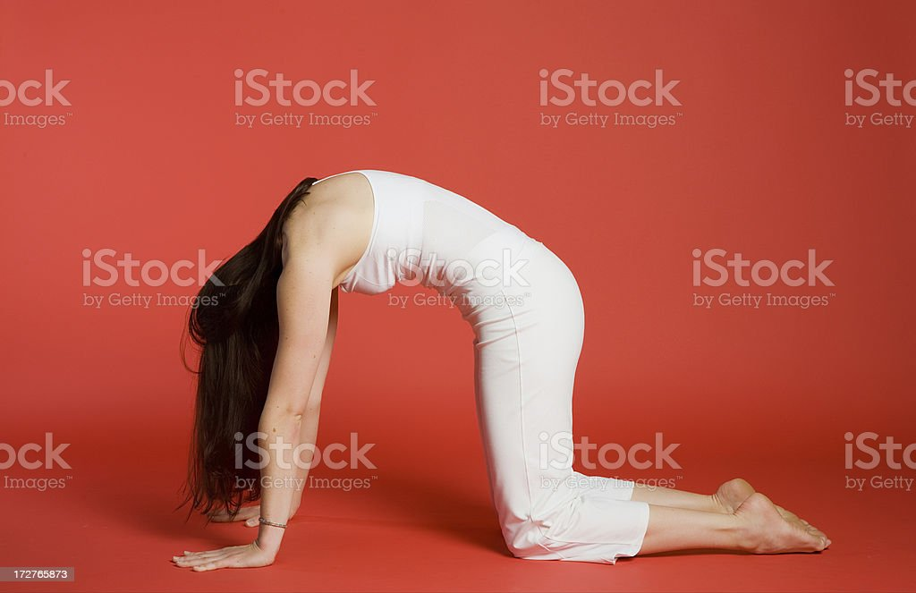 Woman in Cat/Cow Pose royalty-free stock photo