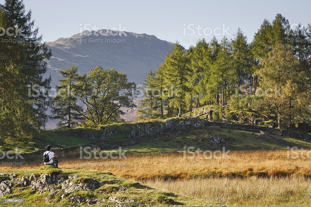 Woman in countryside royalty-free stock photo