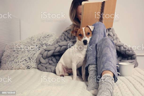 Woman in cozy home clothes relaxing at home with dog jack russel picture id886790848?b=1&k=6&m=886790848&s=612x612&h=lpk5kjzpcd3lhyqy2iade32jsaoy8zzb5oja jnw380=