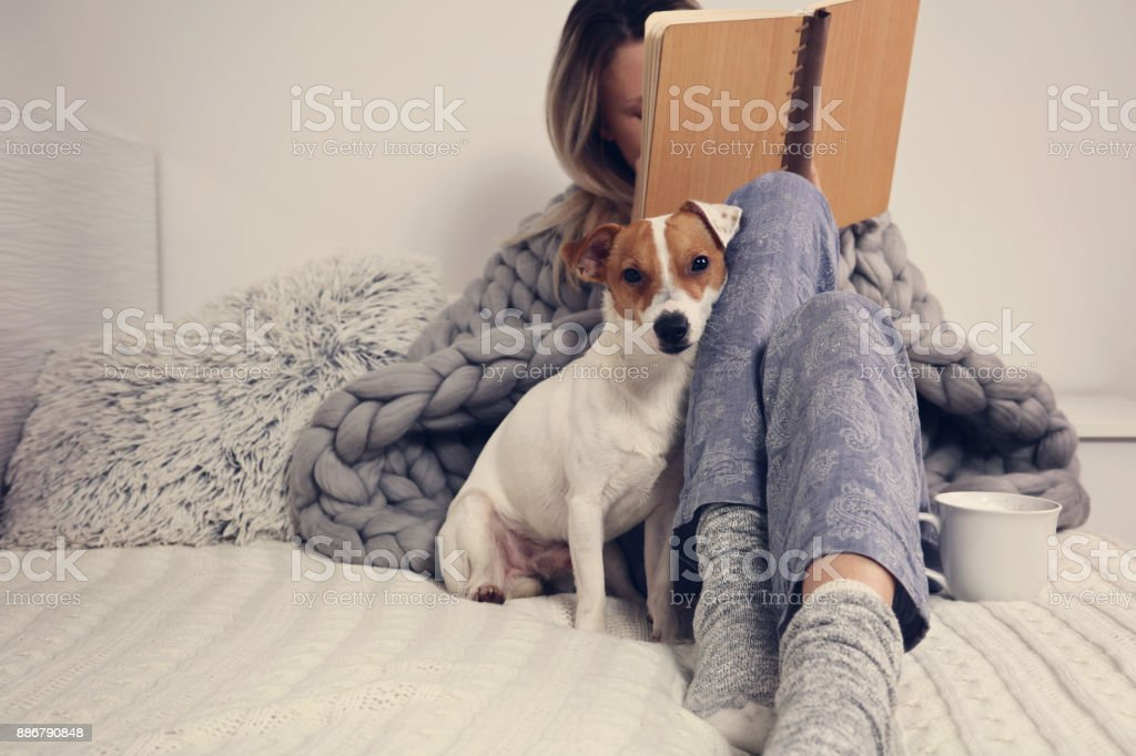 Woman in cozy home clothes relaxing at home with dog Jack Russel Terrier, drinking cacao, reaing a book. Comfy lifestyle. stock photo