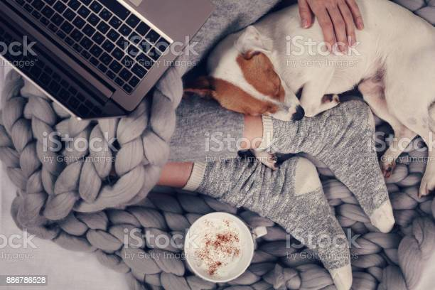 Woman in cozy home clothes relaxing at home with sleeping dog jack picture id886786528?b=1&k=6&m=886786528&s=612x612&h=ckeikt 2op5o2dmbf3bh74hcpgwbqfytmxs8vy8mt4u=