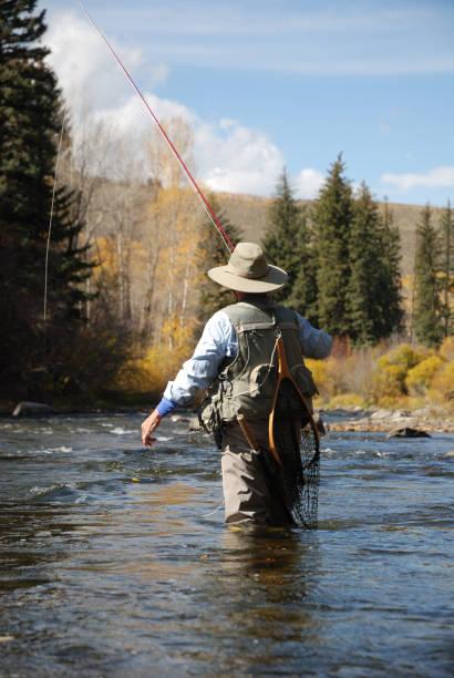 mulher pesca com mosca - com os pés na água - fotografias e filmes do acervo