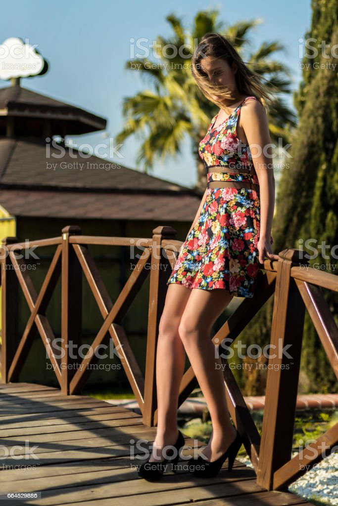Woman In Floral Dress royalty-free stock photo