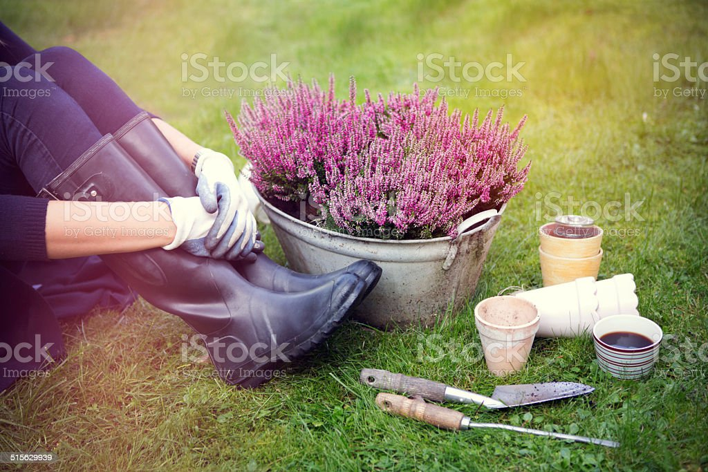 Woman in garden. stock photo