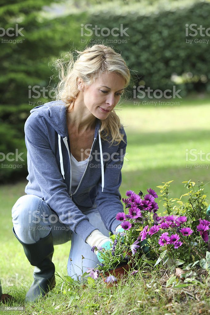 Woman in garden taking care of flowers royalty-free stock photo
