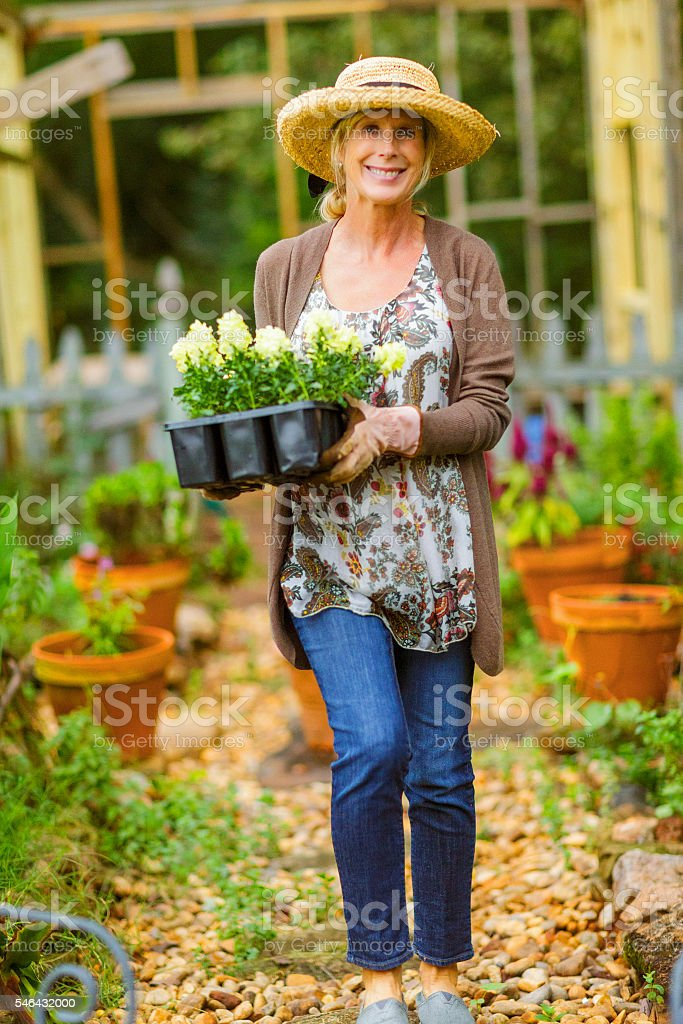 Woman in her flower garden carrying a tray full of stock photo