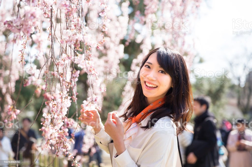 京都の女 ストックフォト