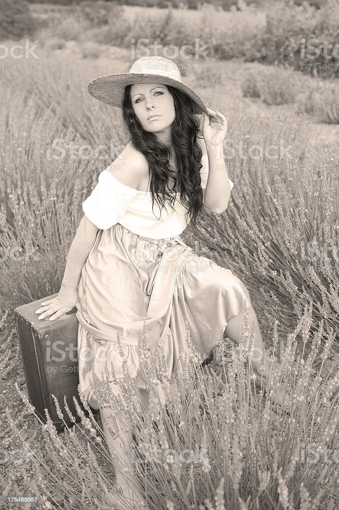 Woman in Lavender Field royalty-free stock photo