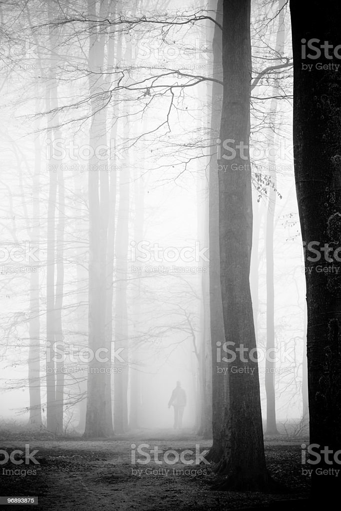 Woman in mist forest stock photo