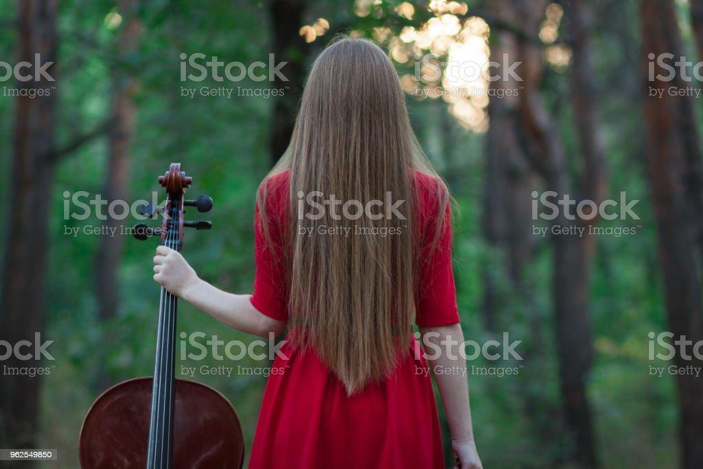Mulher de vestido vermelho com violoncelo na floresta - Foto de stock de 20 Anos royalty-free