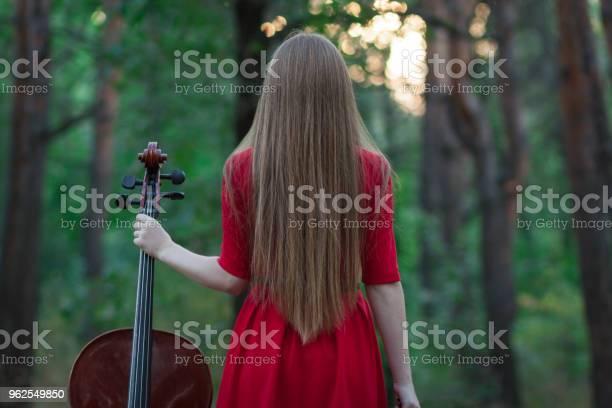 Foto de Mulher De Vestido Vermelho Com Violoncelo Na Floresta e mais fotos de stock de 20 Anos