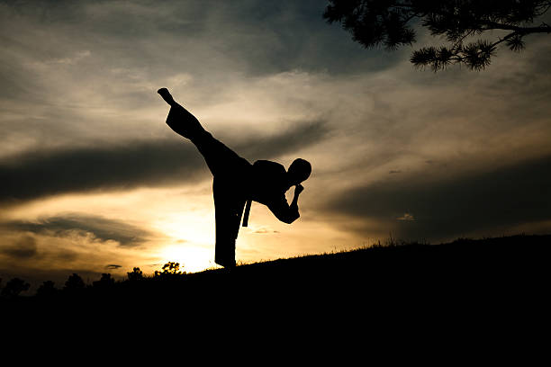 woman in silhouette practicing martial arts, karate. sunset. outdoors. sky. - martial arts stock photos and pictures