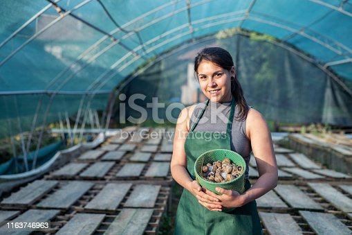 Smiling portrait of woman holding bucket with freshness raw snails.