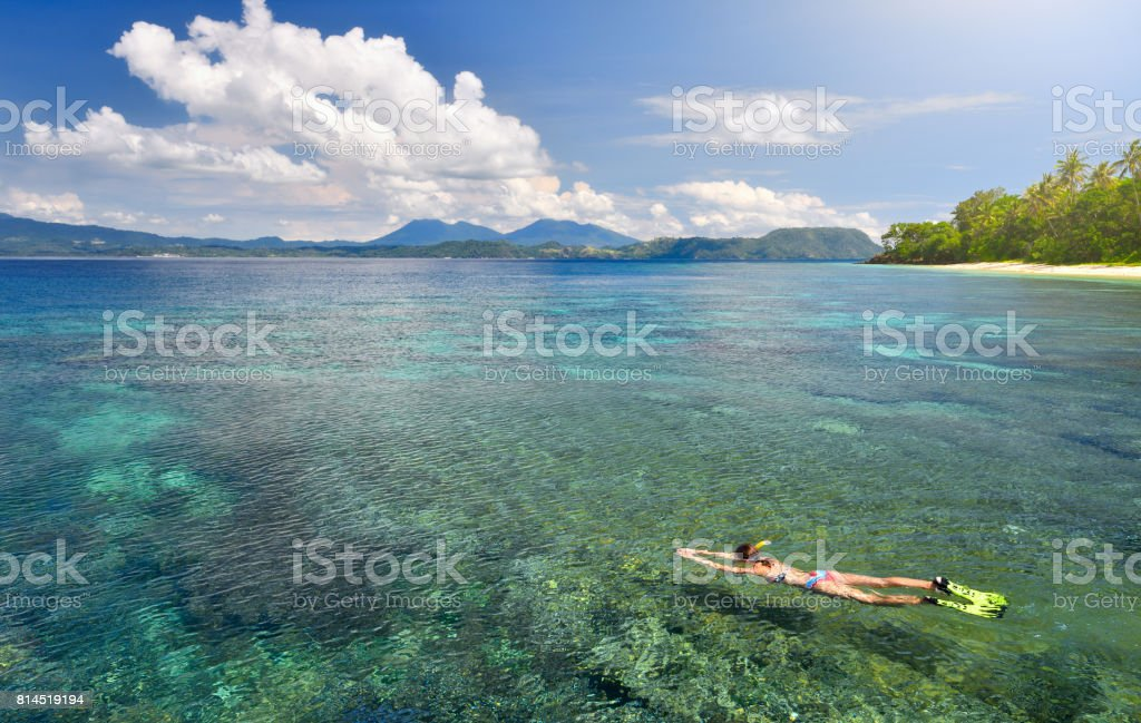woman in swimsuit snorkeling in tropical sea above corals reef stock photo