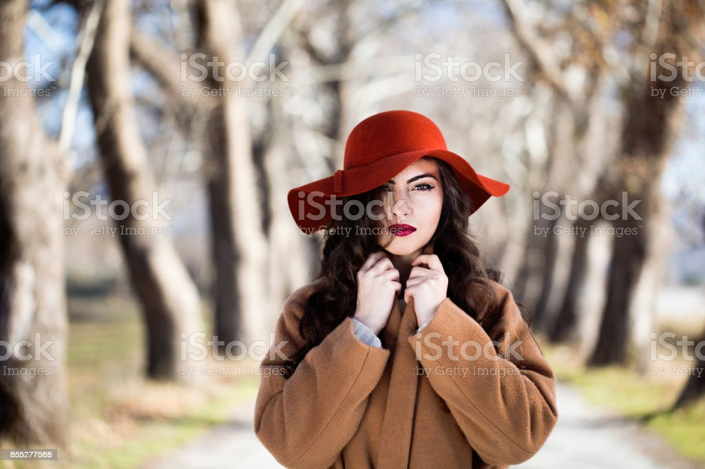 Woman in the autumn fores stock photo