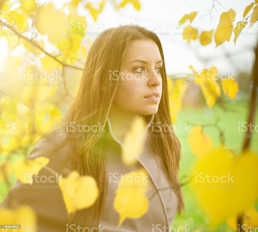 Woman in the autumn forest royalty-free stock photo