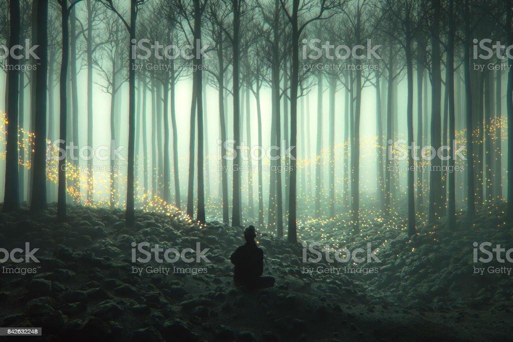 Mulher na floresta com luzes misteriosas fantasia - foto de acervo